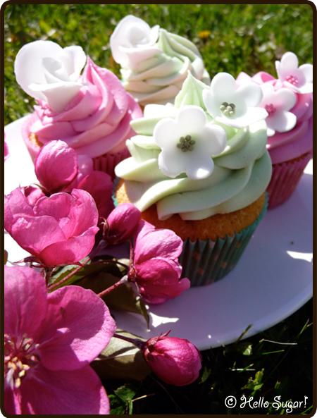 vaniljcupcakes med hallonfyllning