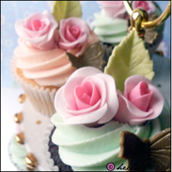 two toned roses cupcakes